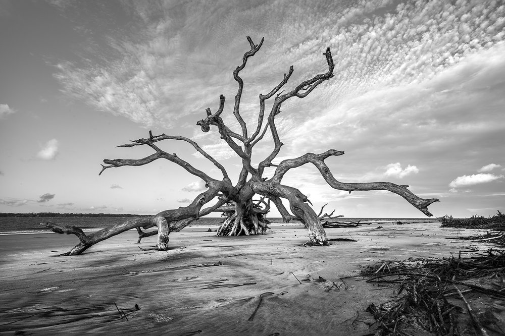 Jeykell Island