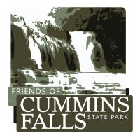 friends_cummins_logo.jpg