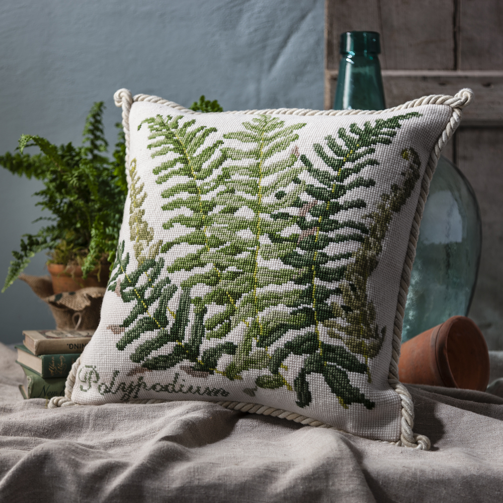 Polypodium Cream Cushion - Shade Garden.jpg