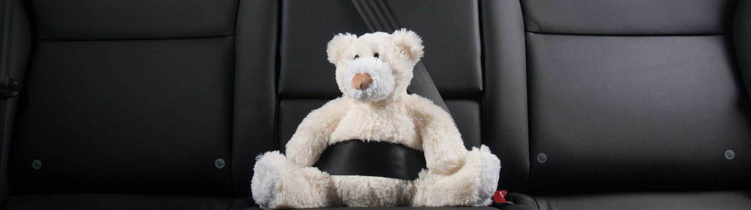Car Seat Laws In Nevada
