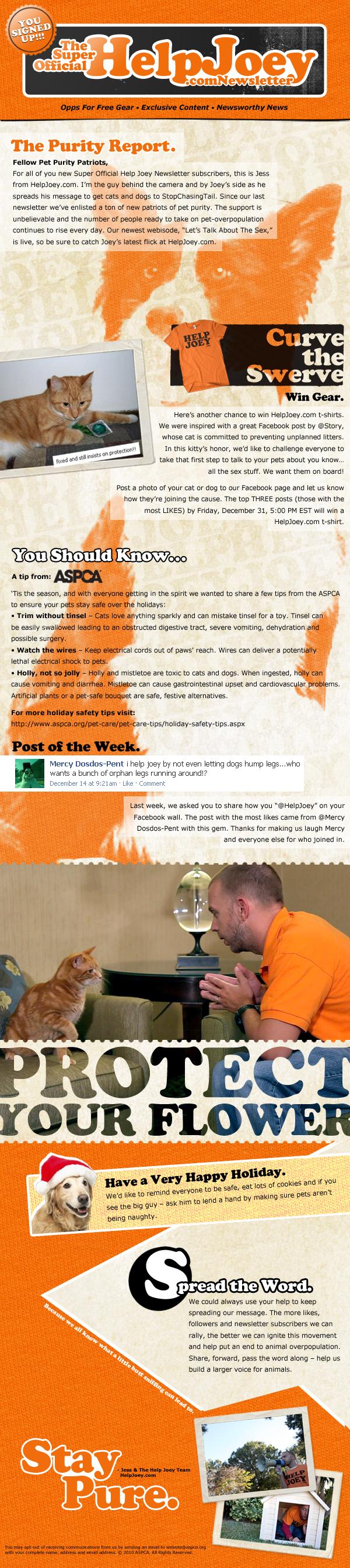 newsletter_3_1.jpg