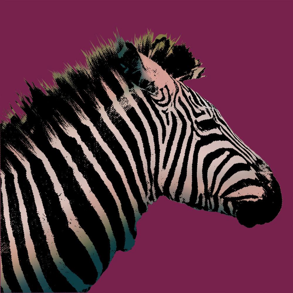 Zebra_PopArt.jpg