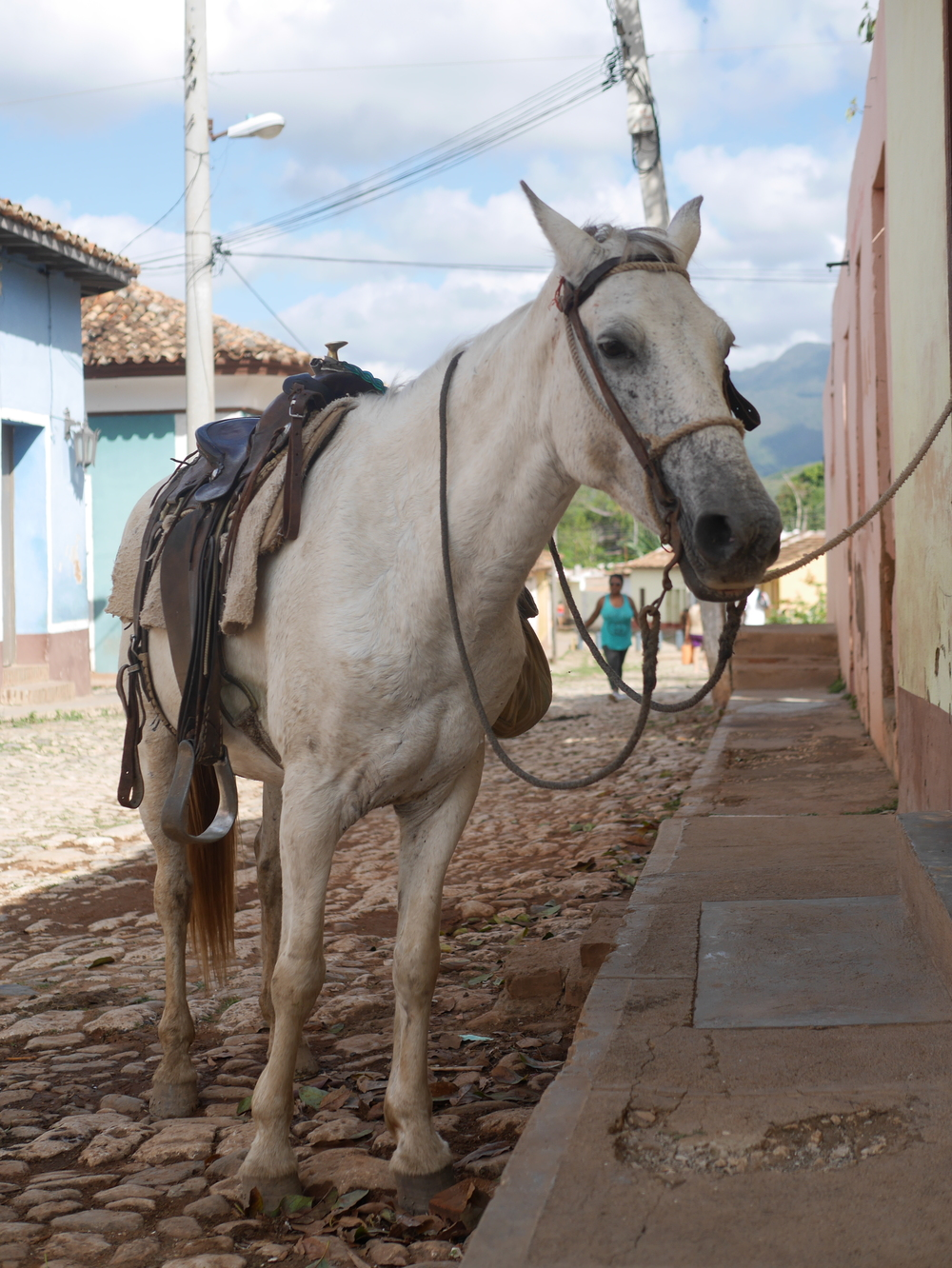 Many people get around by horse and buggy in Trinidad, Cuba. Cars are almost exclusively private and shared taxis.