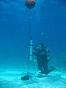 underwater sounds - ocean gems mentor