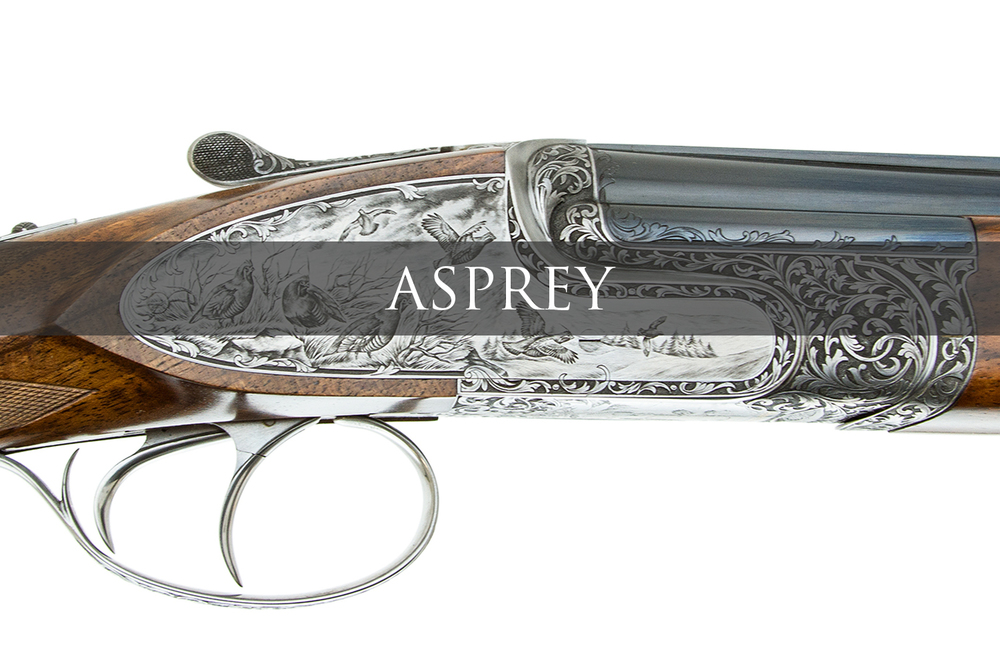 ASPREY BANNER.jpg