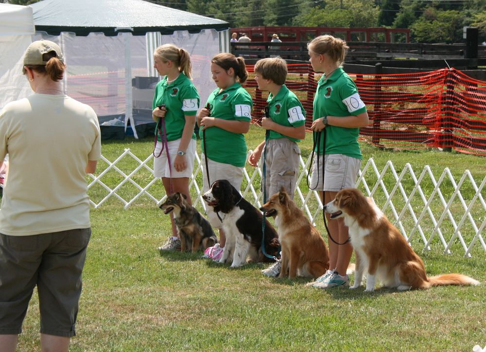 4-H Team Obedience competition.  The girl on the far end and the little boy (he's not so little any more) are my younger siblings with their dogs!