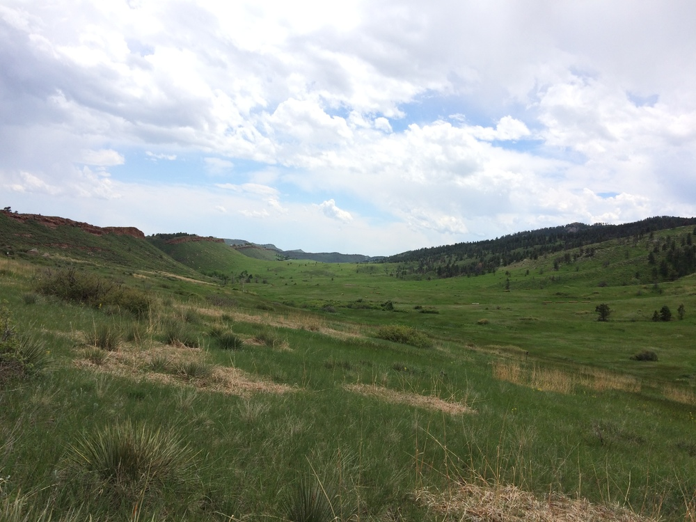 Well, as close to the Shire as you can get in real life, anyways.  Lory State Park, Colorado.