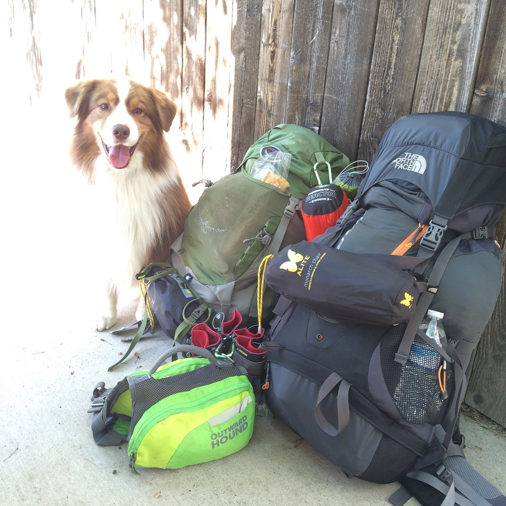 fort-collins-backpacking-dog-osprey