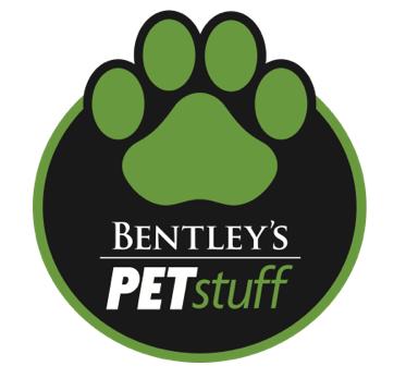 greeley-dog-training-classes