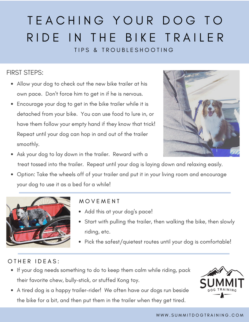 teaching-your-dog-to-ride-in-the-bike-trailer