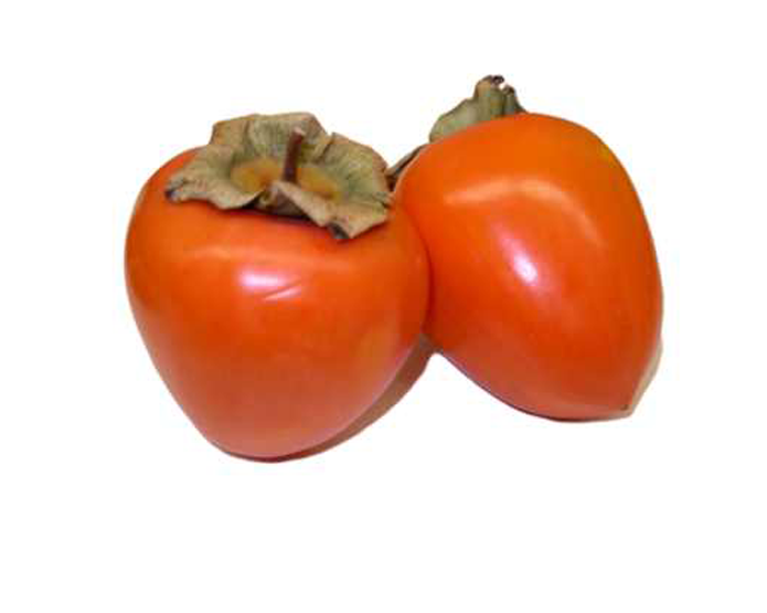 <strong>PERSIMMON</strong>