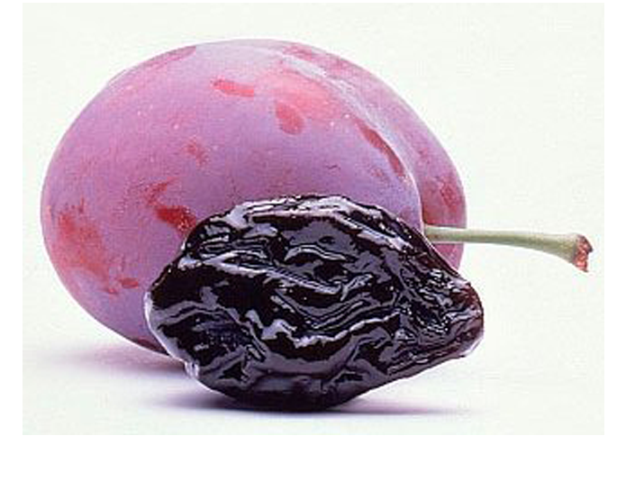 <strong>PRUNE</strong>
