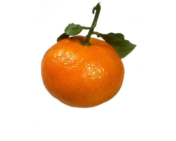 <strong>TANGERINE</strong>