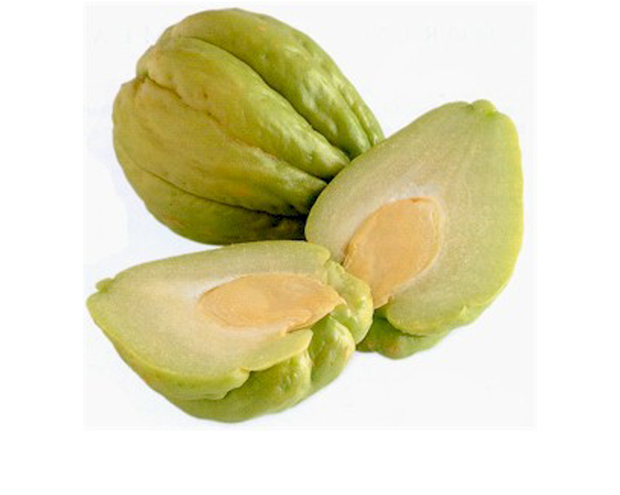 <STRONG>CHAYOTE</STRONG>