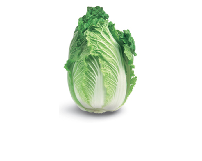<STRONG>CHINESE CABBAGE</STRONG>