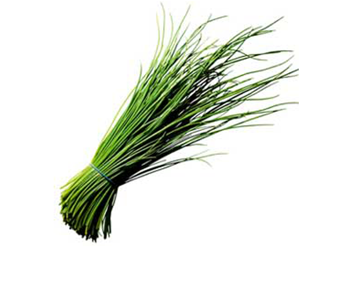 <STRONG>CHIVES</STRONG>