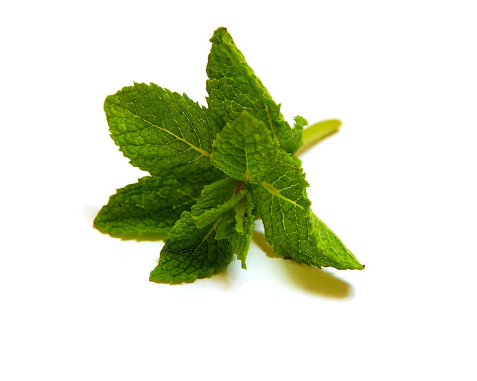 <STRONG>MINT</STRONG>