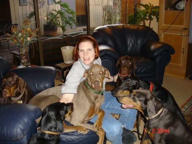 Dog Canine Training About