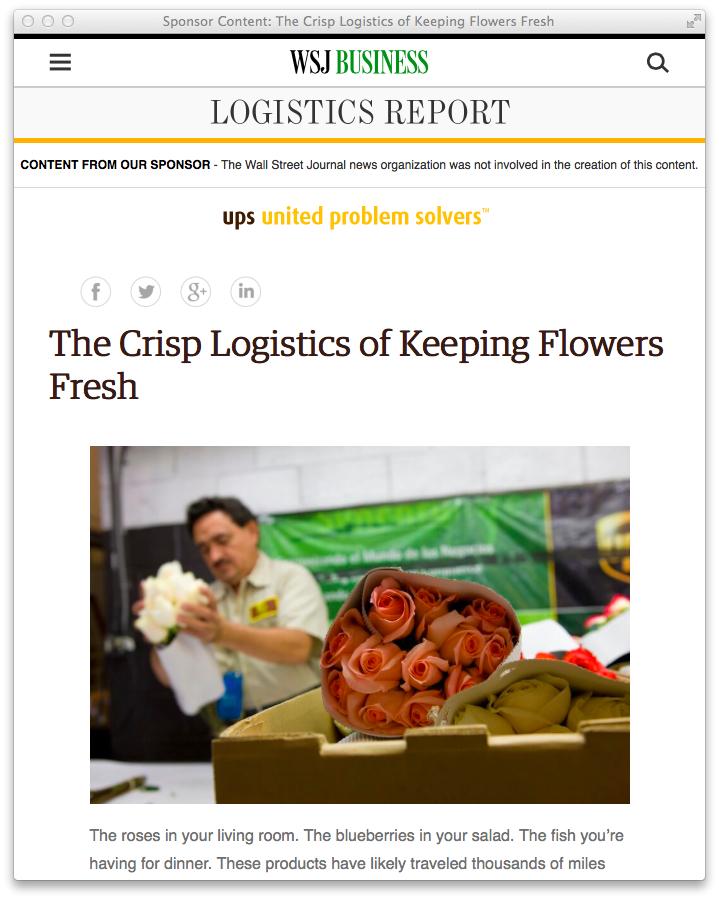 Original9/UPS news story