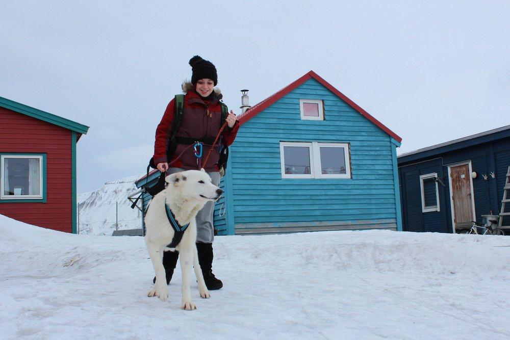 Svalbard: Walking in a winter wonderland (Image:  Pixabay )