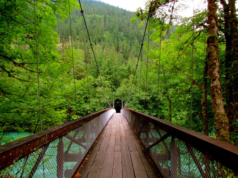 A walking bridge extends over the Skagit River in North Cascades National Park. (Image:  Flickr )