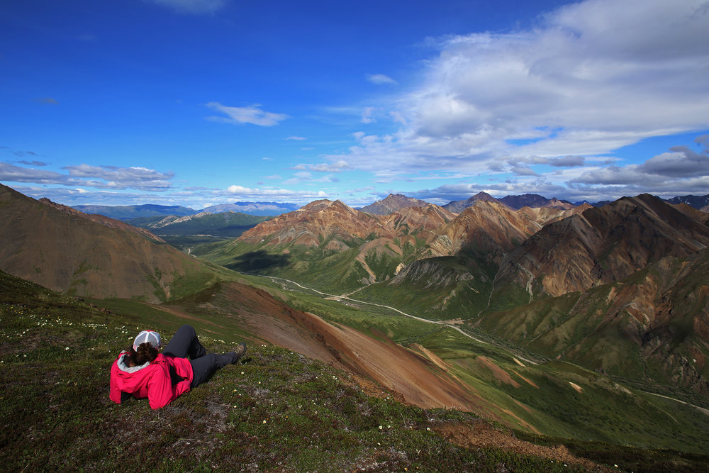 Jessica Millman rests on a ridgeline overlooking Igloo Canyon in Denali National Park and Preserve on June 30, 2017.