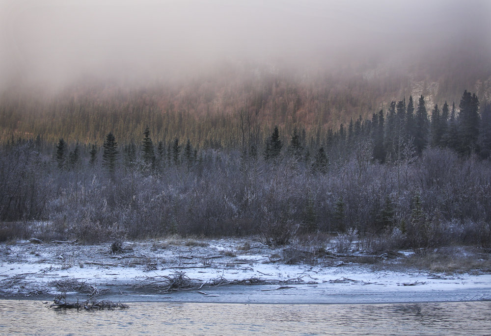 A river flows next to the George Parks Highway after a fresh snow in Denali, Alaska, on October 14, 2017.