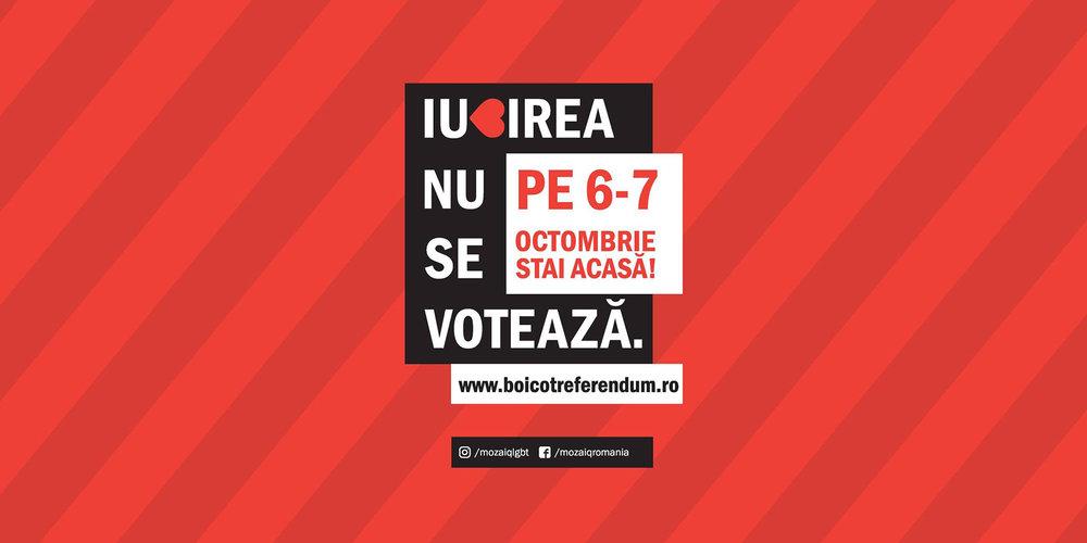 gay-referendum-romania-dragostea-nu-se-voteaza-bro-bear-blog.jpg