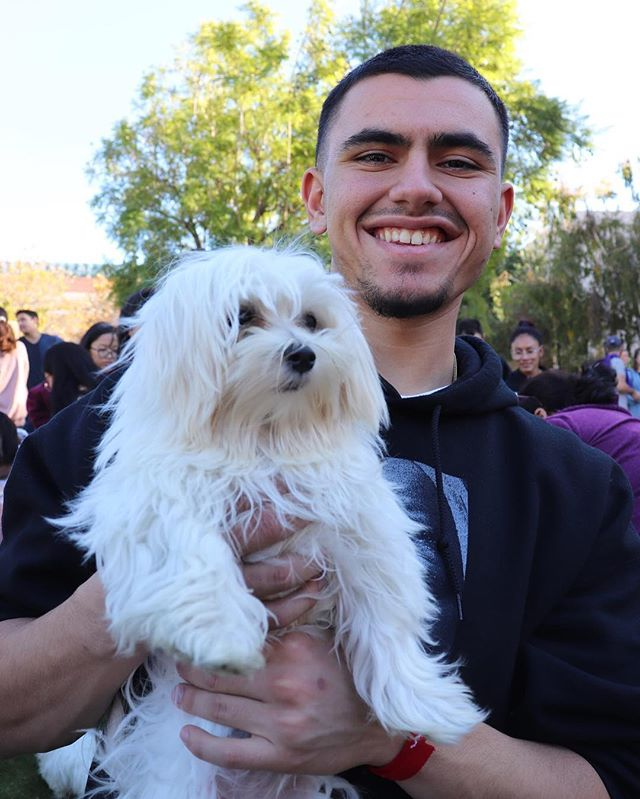 Thank you for everyone who came out for puppy day! We know that finals are ruff, so relaxing with puppies can make everything better. Remember Vaqueros, your hard work doesn't go unnoticed so keep it up. Good luck on your finals and enjoy your winter break!