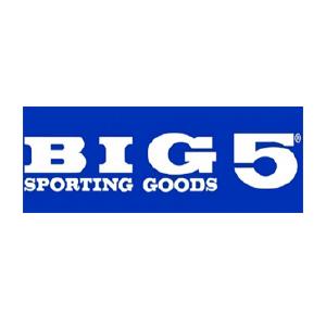 big5_website.png