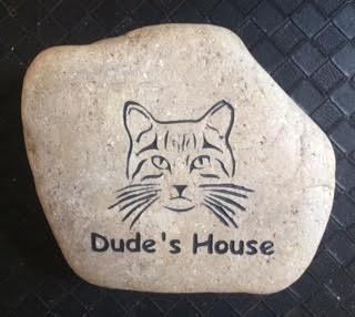 Dude's House.jpg