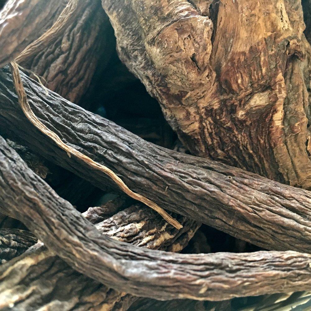 Roots of Gentian