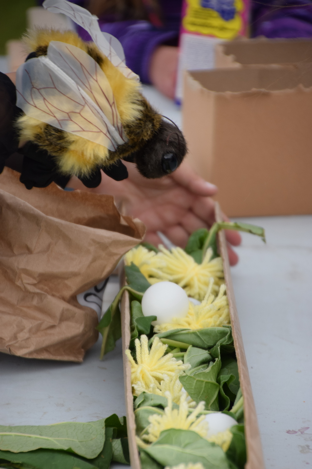 and used our bee puppet to show how they lay their eggs in tunnels with pollen and nectar.
