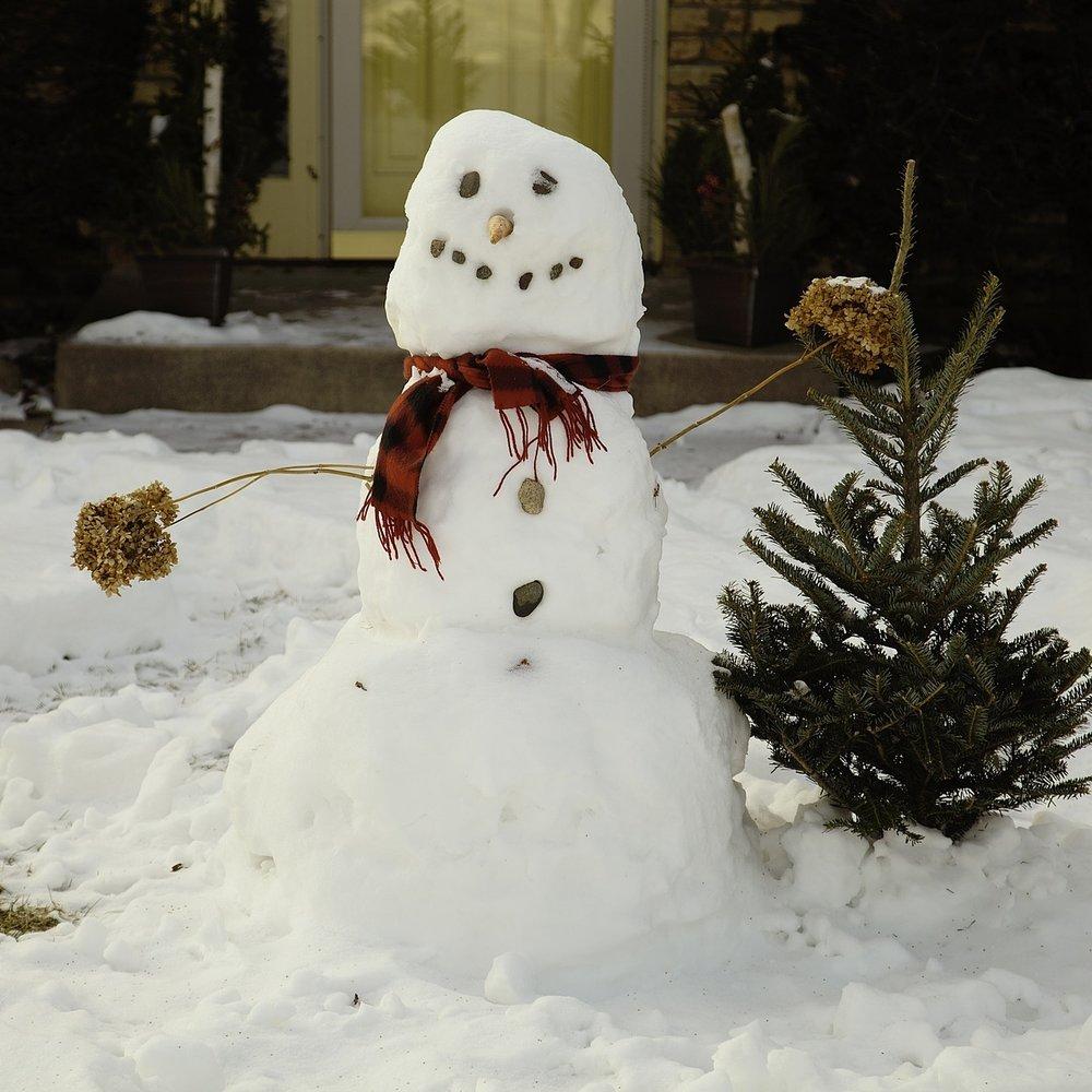 snowman-1139260_1920.jpg