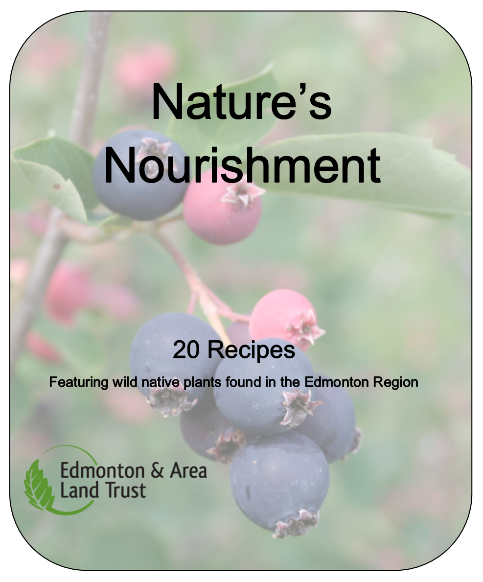 Natures Nourishment Cover.png