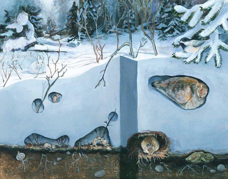 Illustration by Kristin Link ( www.kristinillustration.com )