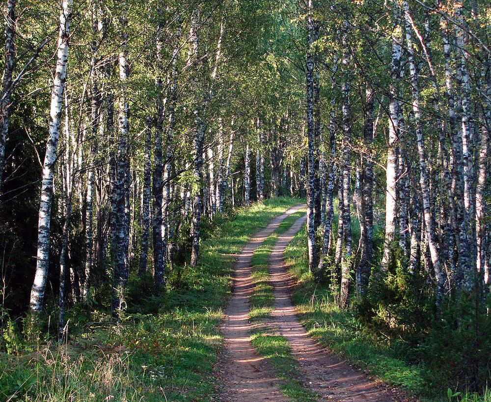 Põhja-Kõrvemaa, Estonia