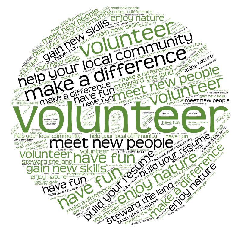 Volunteer Recruitment Words 2.png