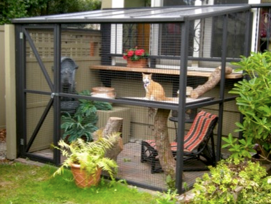 "(An example of an outdoor enclosure, or ""catio"".) (Source: catsandbirds.ca)"