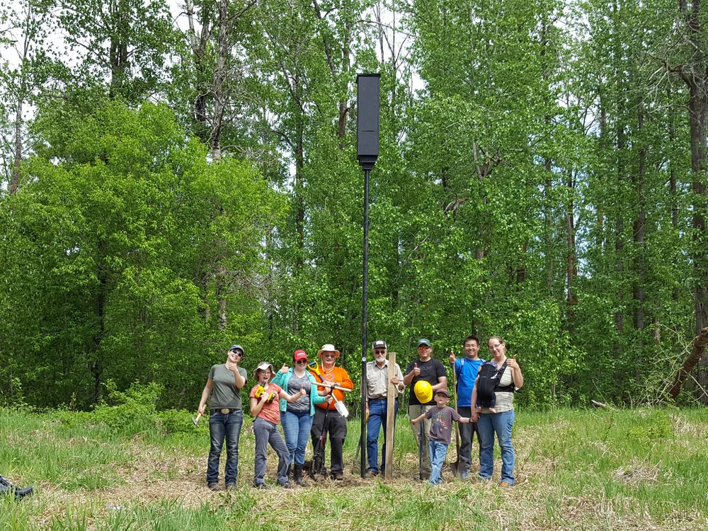 2017 boisvert bat box group.jpg