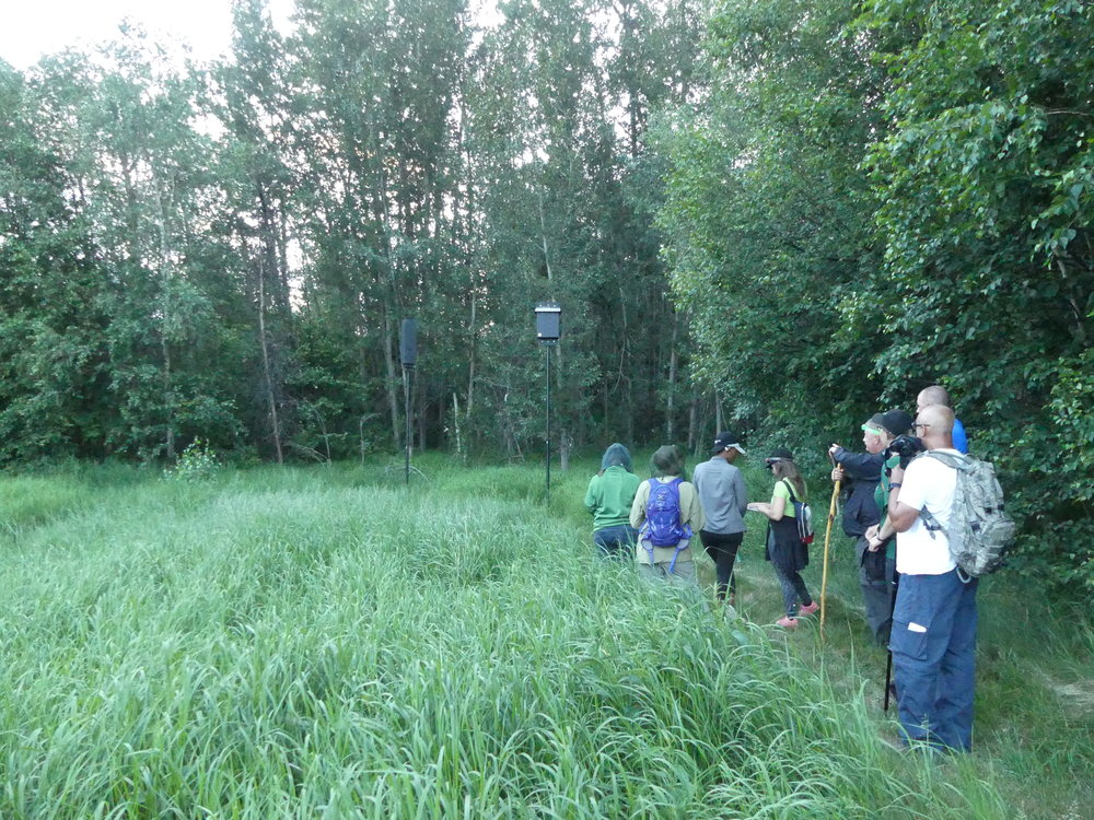 Volunteers at Glory Hills Bat and Owl Survey