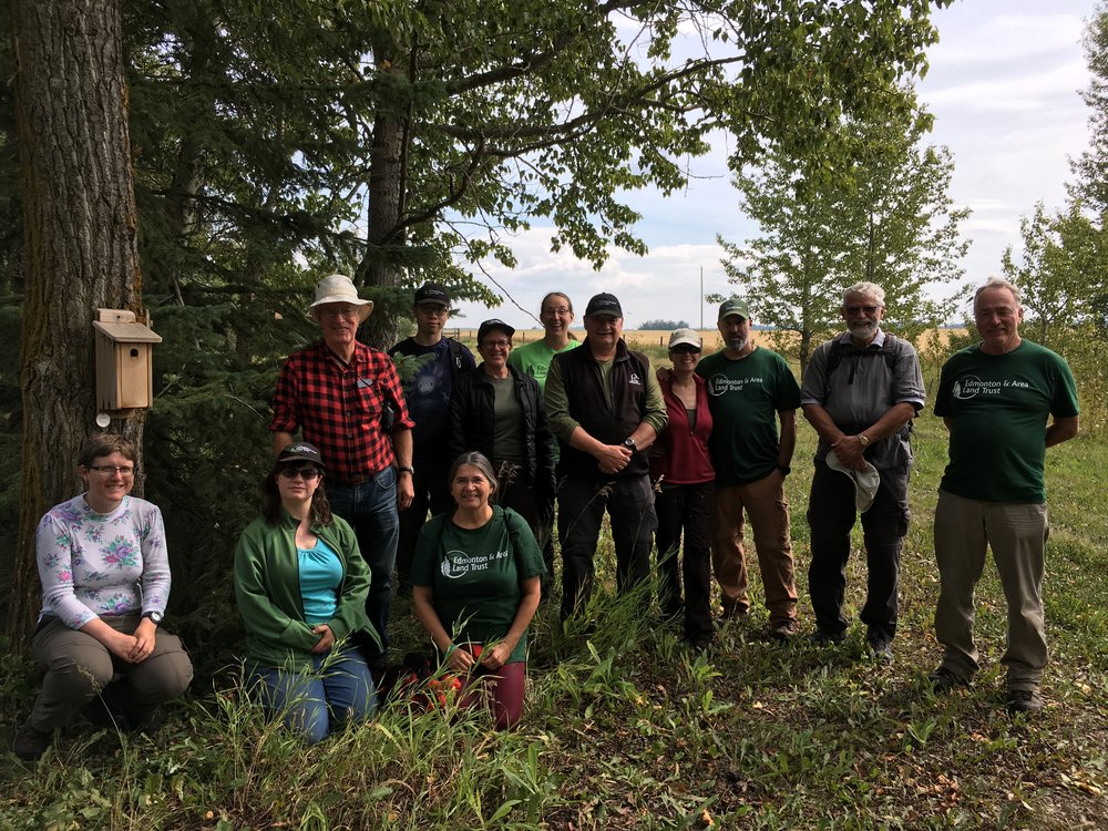 Volunteers cleaned out 34 nest boxes at Boisvert's Greenwoods