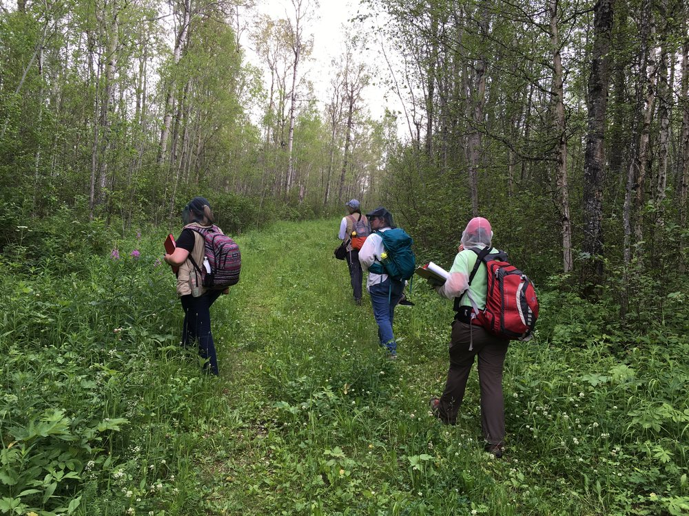 EALT staff completing baseline documentation surveys at Lu Carbyn Nature Sanctuary.