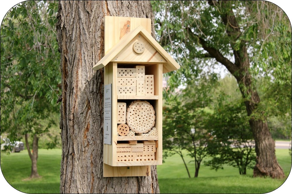 Bee hotels are about 2 1/2 feet tall and have several wooden blocks inside with tunnels where bees can lay eggs.