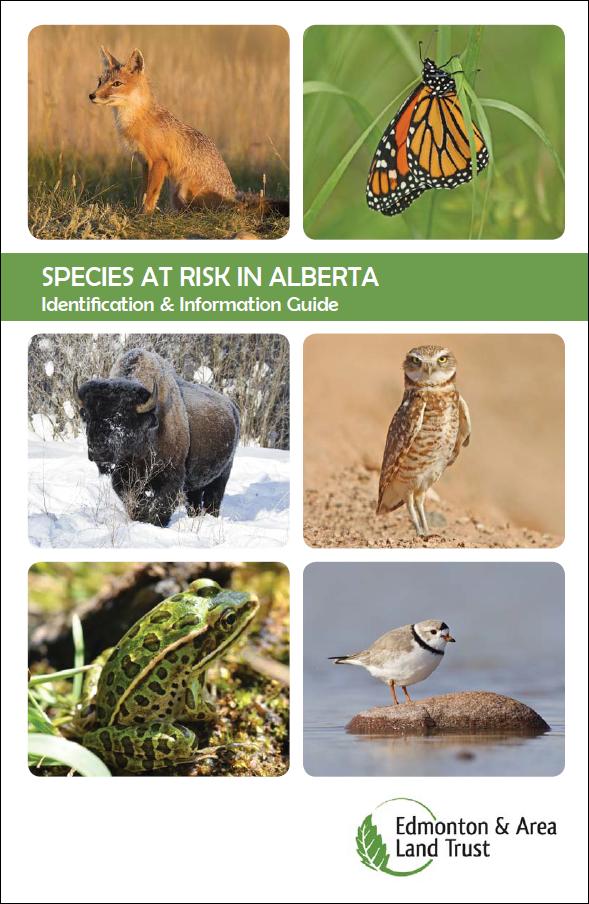 EALT's Species at Risk Guide