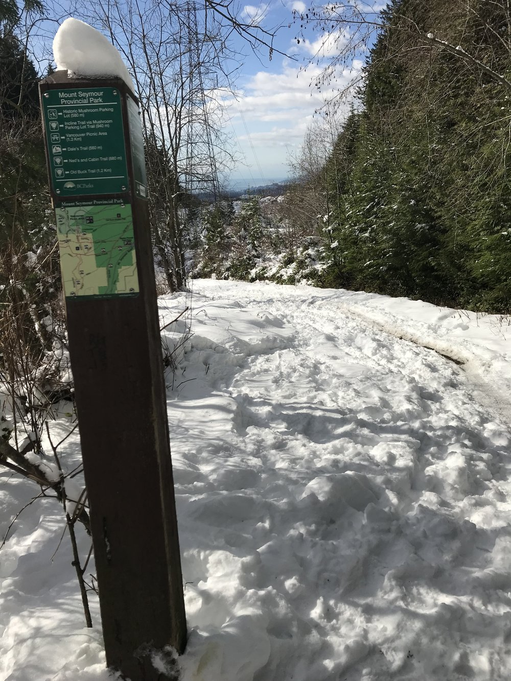 What Little Snow Weve Had This Winter >> Trail Condition Update February 20th Endless Biking
