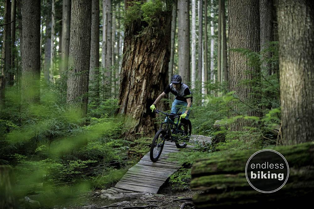 Endless biking fiver -1280.jpg