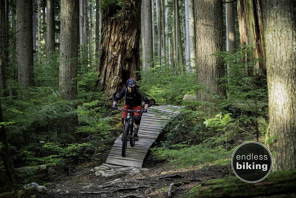 Endless biking fiver -1283.jpg