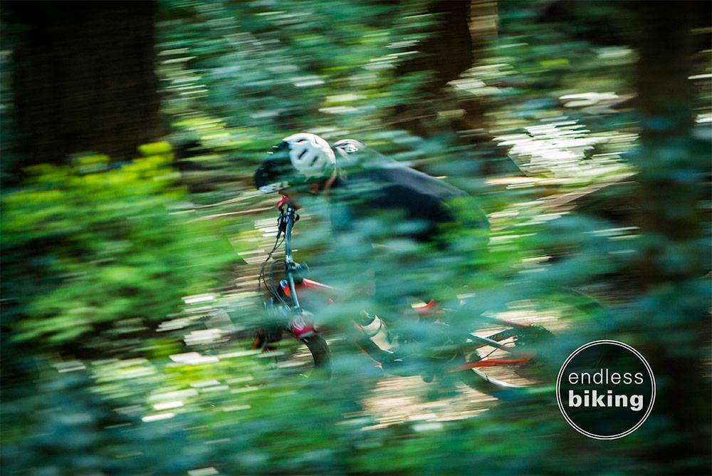 Endless biking fiver -1312-1.jpg