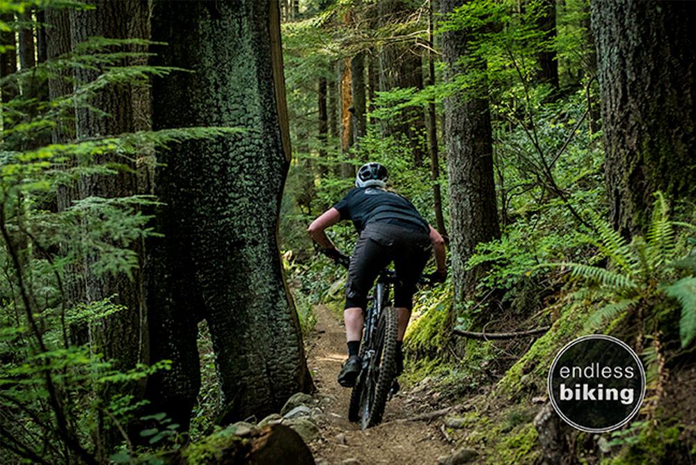 Endless biking fiver -1448.jpg